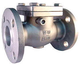 Flanged End Swing Check Valve 2024 PN16/40 - Haitima Valve p1